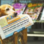 Jully e o jornal impresso: uma história de fidelidade