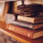 Jornalismo Literário: O extraordinário atrás do ordinário