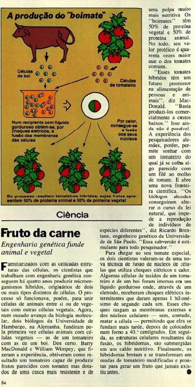 Barriga publicada pela revista Veja em 1983 - O Boimate
